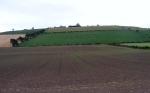Flodden Field TodayCourtesy of Jody Allen