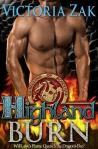 HIghlandBurn-Abs2(1)